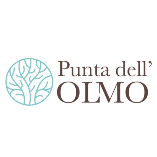 Punta dell'Olmo